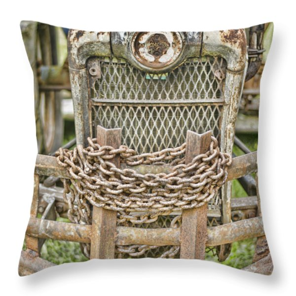 Head On Throw Pillow by Heather Applegate