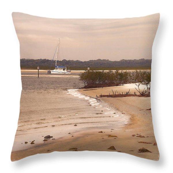 Heading Out To The Ocean Throw Pillow by Deborah Benoit