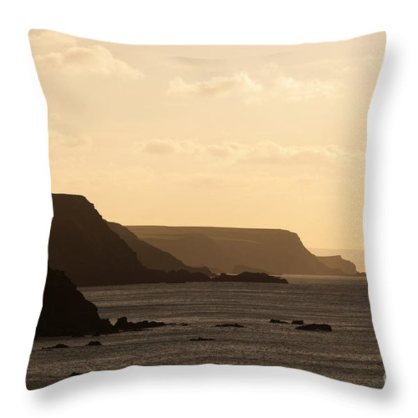 Headland Throw Pillow by Anne Gilbert