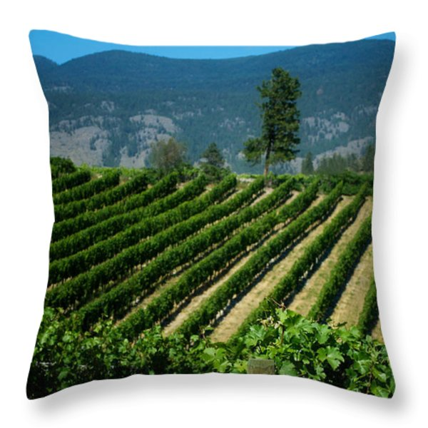 Heard It Through The Grapevine Throw Pillow by Lisa Knechtel
