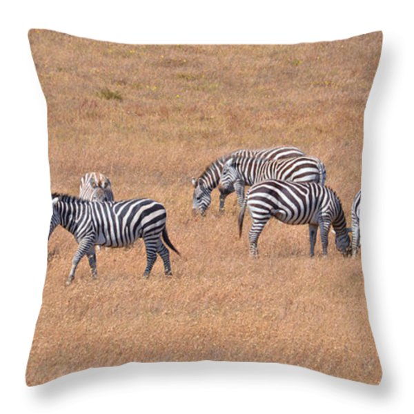 Hearst Castle Zebras Throw Pillow by Lynn Bauer