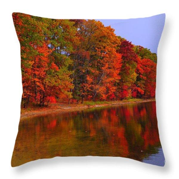 Heart Of Autumn Throw Pillow by Terri Gostola