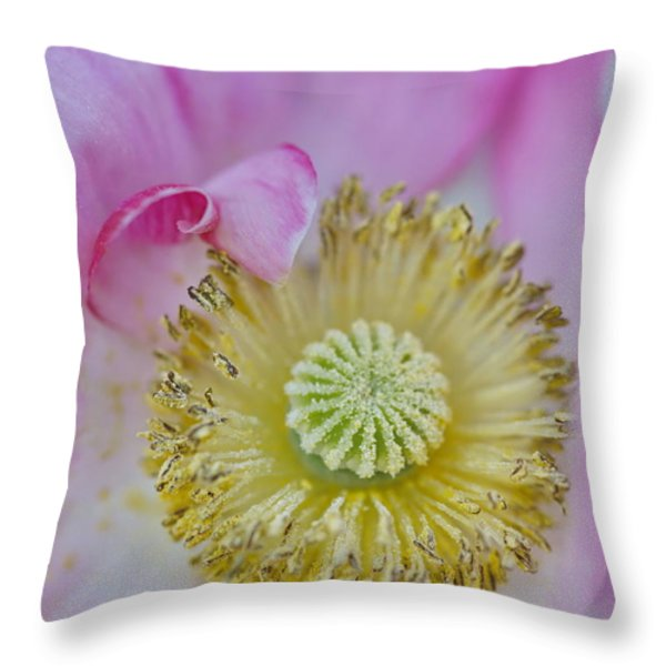Heart Of Gold  Throw Pillow by Andrea Kollo