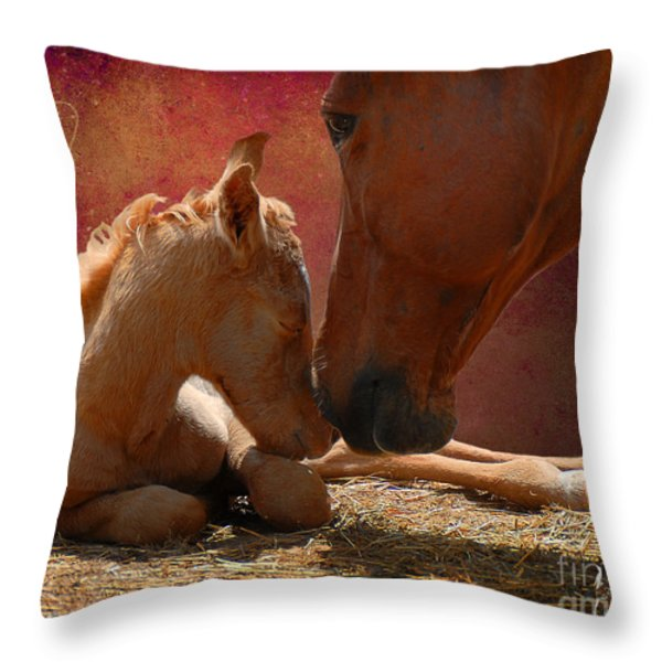 Heart Of Hearts Throw Pillow by Karen Slagle
