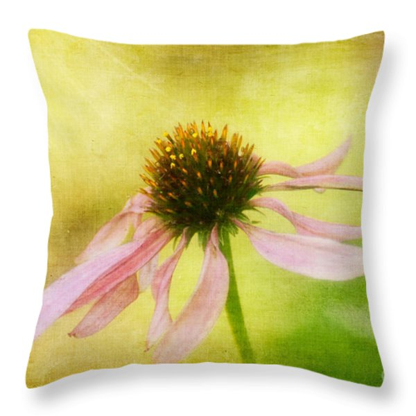 Heart's Desire Throw Pillow by Lois Bryan