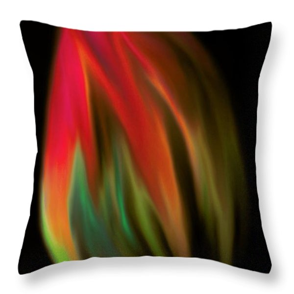 Heat Of The Moment Throw Pillow by Marianna Mills