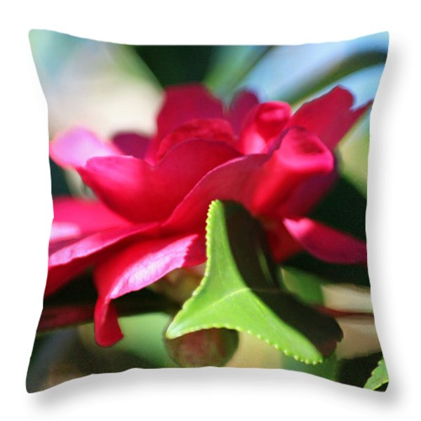 Heavenly Perfection Throw Pillow by Suzanne Gaff