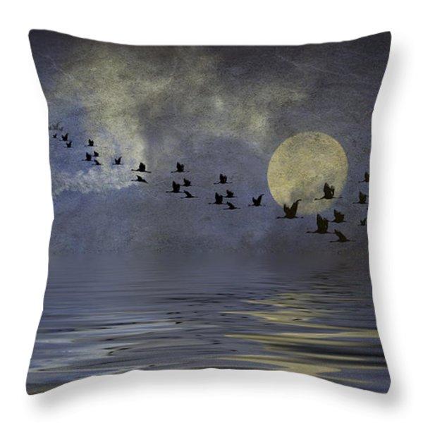 Heavens Gate Throw Pillow by Diane Schuster