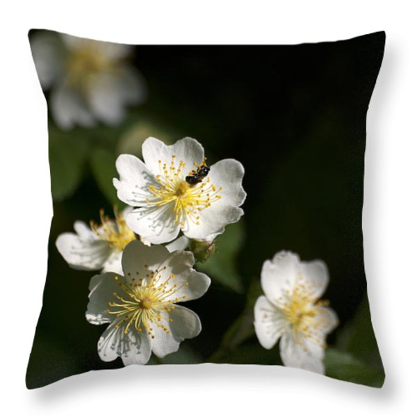Heaven's Scent Throw Pillow by Christina Rollo