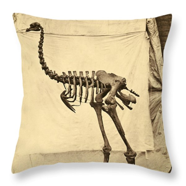 Heavy Footed Moa Skeleton Throw Pillow by Getty Research Institute