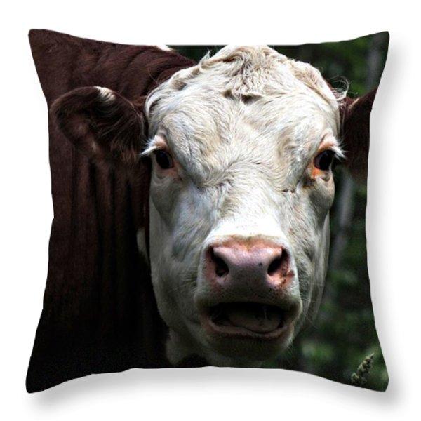 Help Me  Throw Pillow by Marcia Lee Jones
