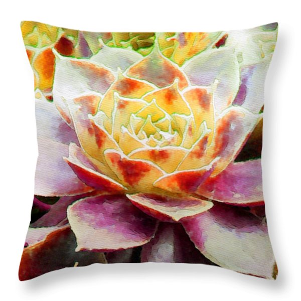 Hens and Chicks Series - Early Morning Quite Throw Pillow by Moon Stumpp