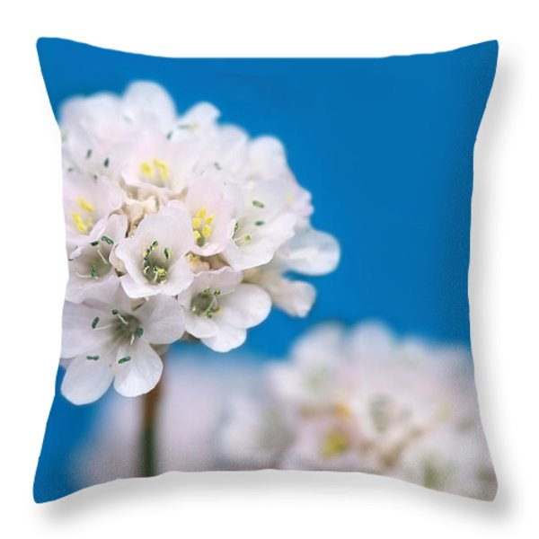 Here Comes The Bride Throw Pillow by Lisa Knechtel