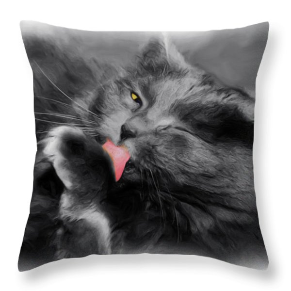 Here's Looking At You Throw Pillow by Joann Vitali