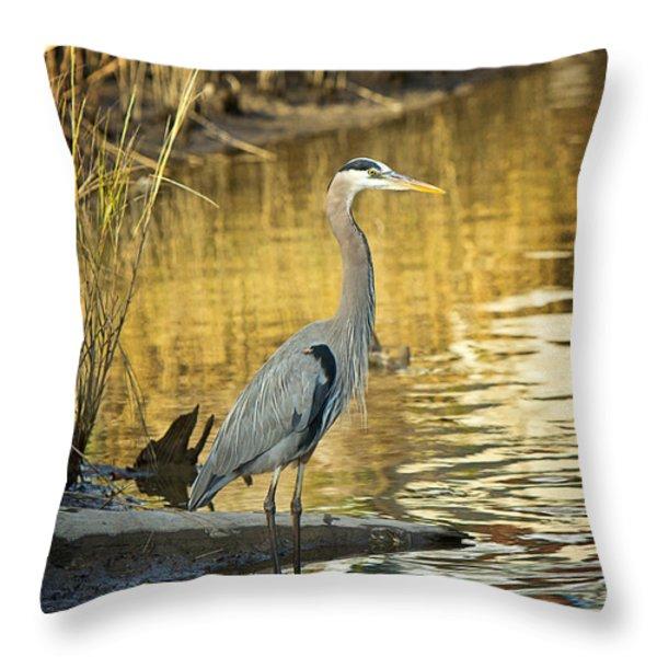 Heron Along The Bayou Throw Pillow by Joan McCool