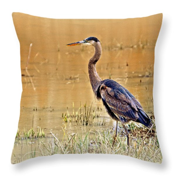 Heron At Sunset Throw Pillow by Marty Koch