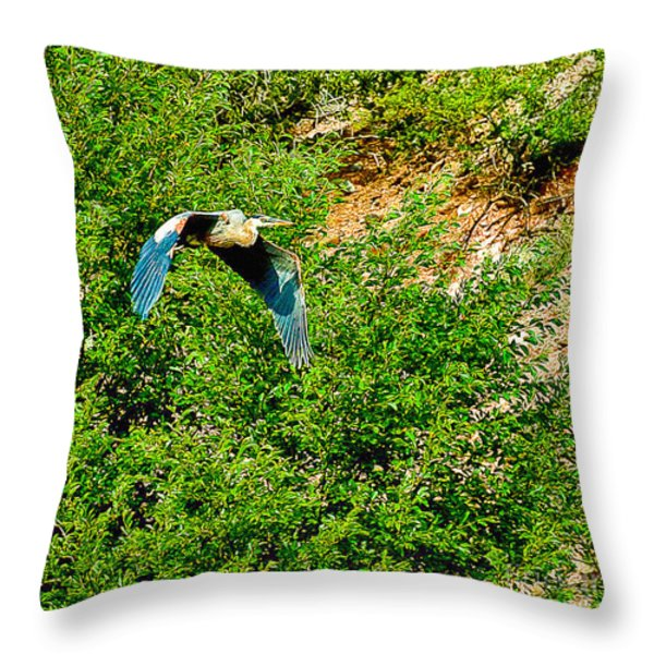 Heron Flies Over Oak Creek In Red Rock State Park Sedona Arizona Throw Pillow by  Bob and Nadine Johnston