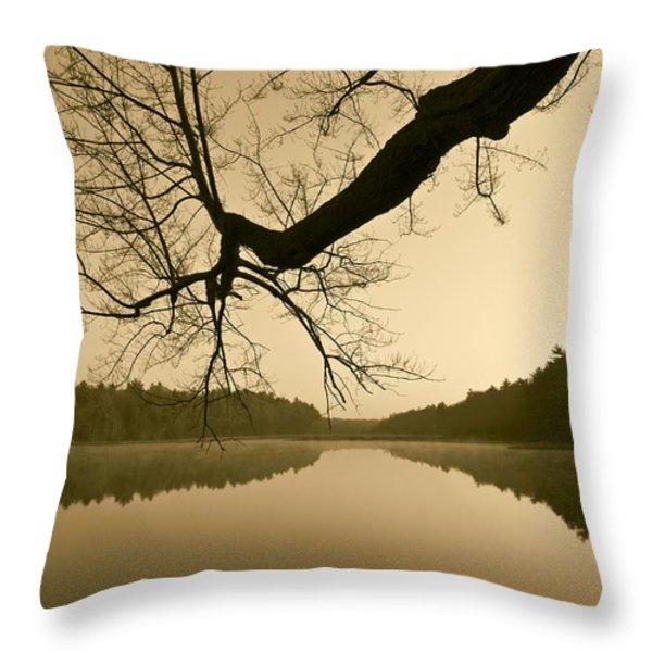 Hewitt Pond Throw Pillow by David Gordon