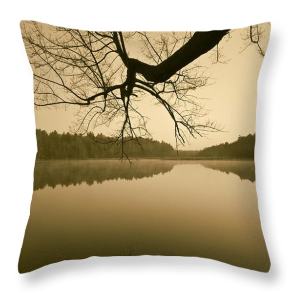 Hewitt Pond No. 2 - vertical Throw Pillow by David Gordon