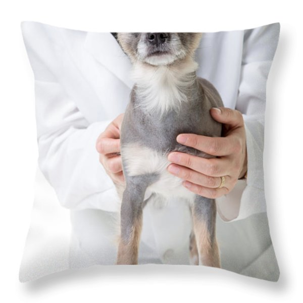 Hey Watch It That's Cold Throw Pillow by Edward Fielding