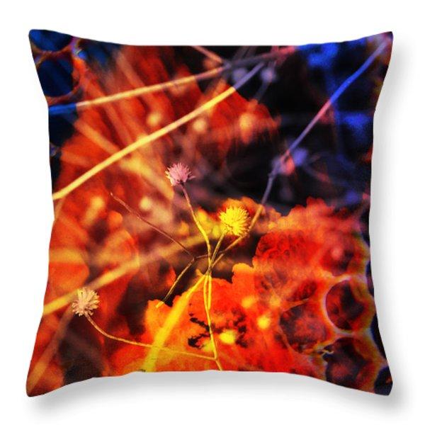 Hibernate Throw Pillow by Skip Hunt