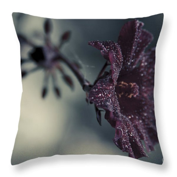 Hibiscus Acetosella Throw Pillow by Sharon Mau