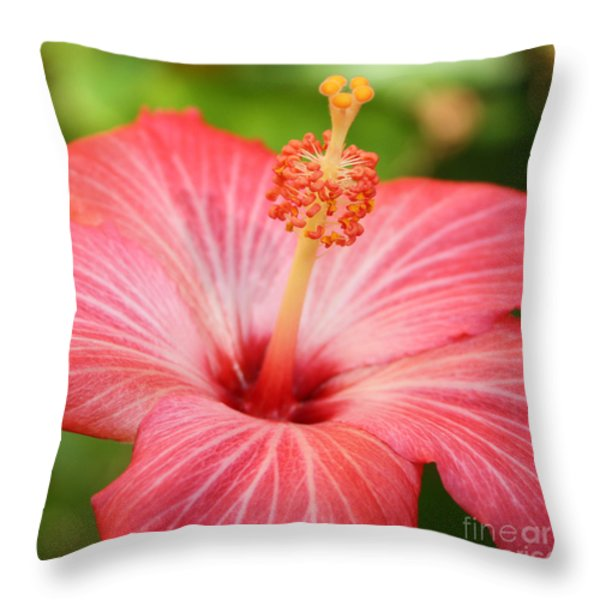 Hibiscus - Square Throw Pillow by Carol Groenen