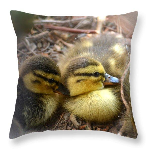 Hidden Throw Pillow by Deb Halloran