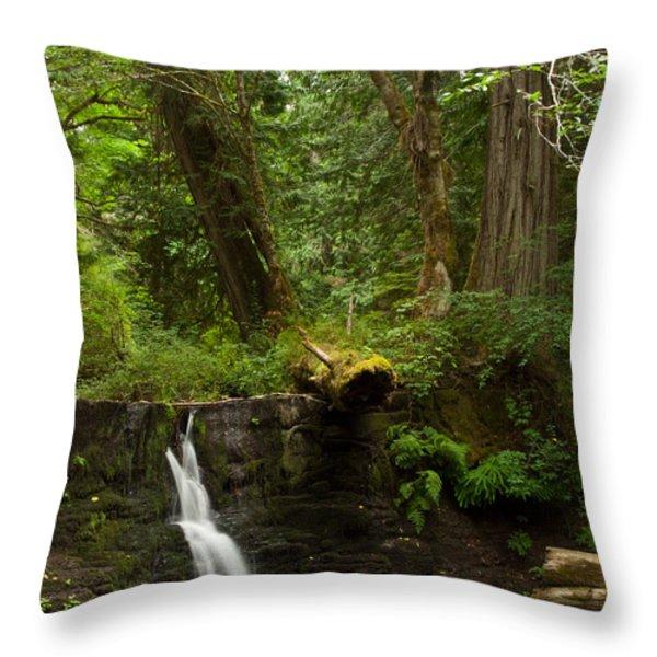 Hidden Gem Throw Pillow by Randy Hall