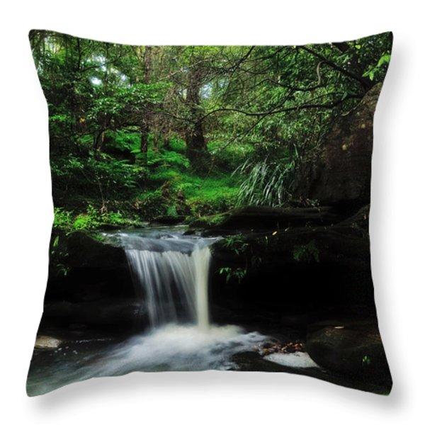 Hidden Rainforest Throw Pillow by Kaye Menner