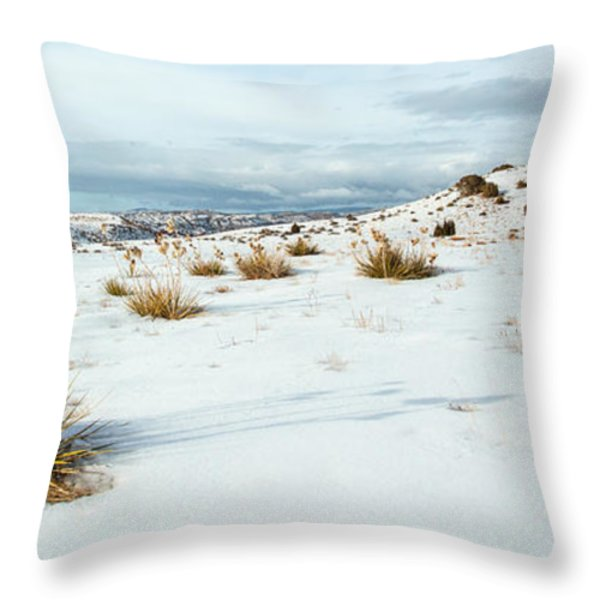 High Desert Snow Throw Pillow by Betty Wiley