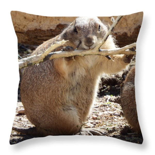 High Fiber Diet Throw Pillow by David G Paul