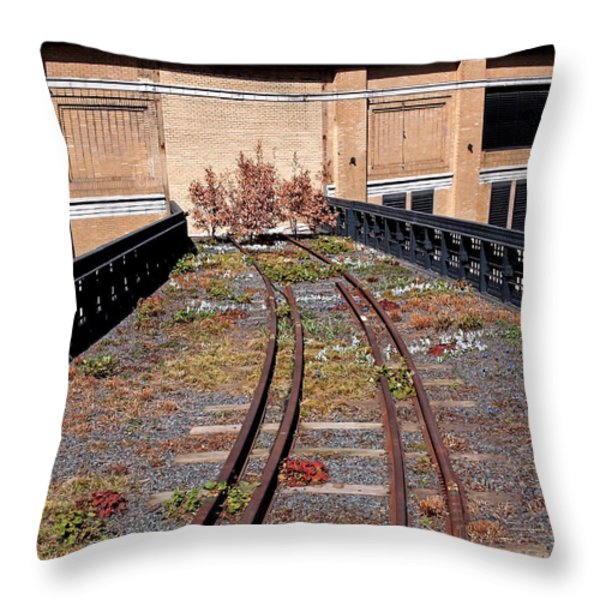 High Line Spur Throw Pillow by Rona Black