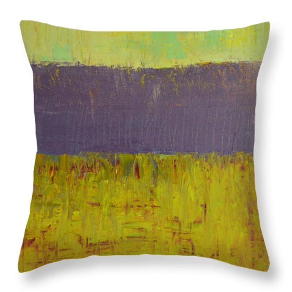 Highway Series - Lake Throw Pillow by Michelle Calkins