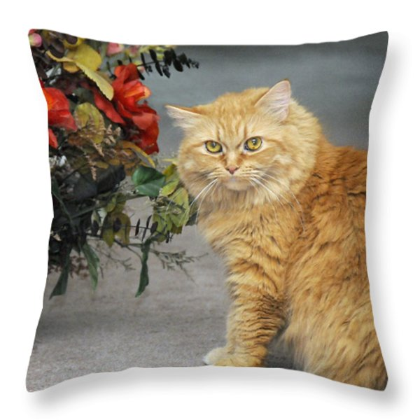 His Majesty Throw Pillow by Kenny Francis