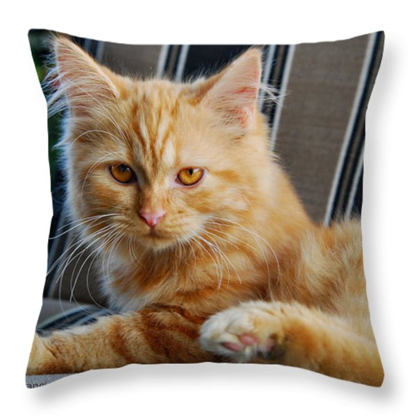 His Royal Highness Throw Pillow by Kenny Francis