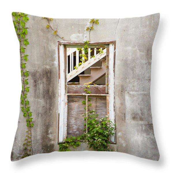 Historic Florida Building - Apalachicola Exchange Building Throw Pillow by Bill Swindaman