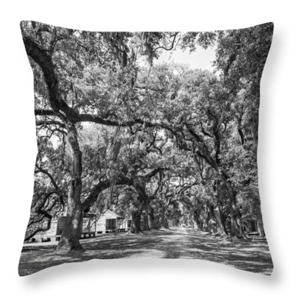 Historic Lane Bw Throw Pillow by Steve Harrington