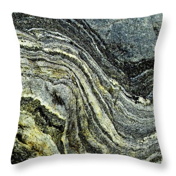 History of Earth 9 Throw Pillow by Heiko Koehrer-Wagner