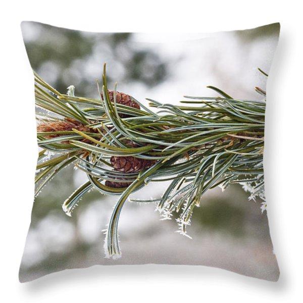 Hoar Frost Throw Pillow by Steven Ralser