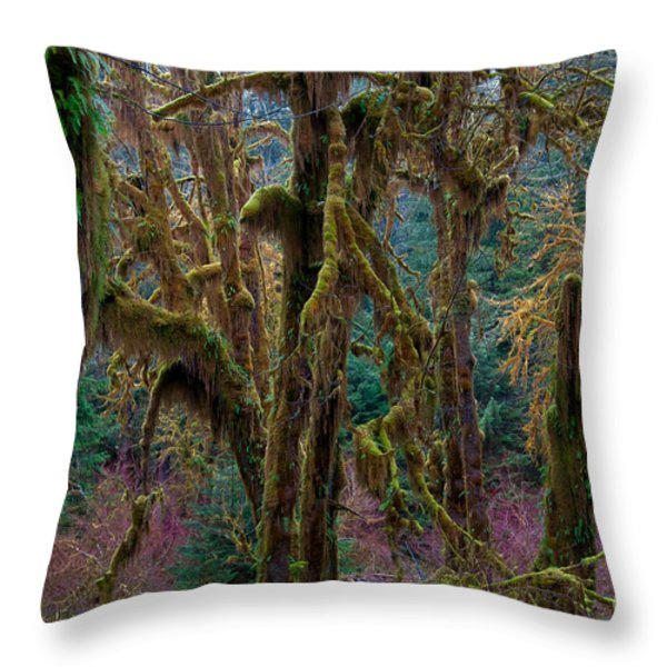 Hoh Rainforest, Olympic National Park Throw Pillow by Mark Newman