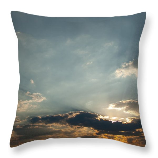 Home Bound  Throw Pillow by Paul Job