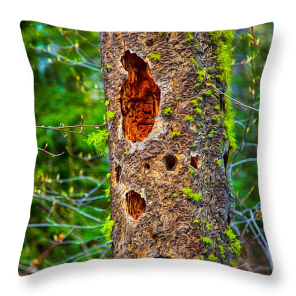 Home Sweet Home Throw Pillow by Omaste Witkowski
