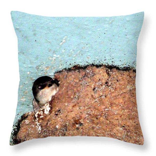 Home Sweet Home Throw Pillow by Zafer Gurel