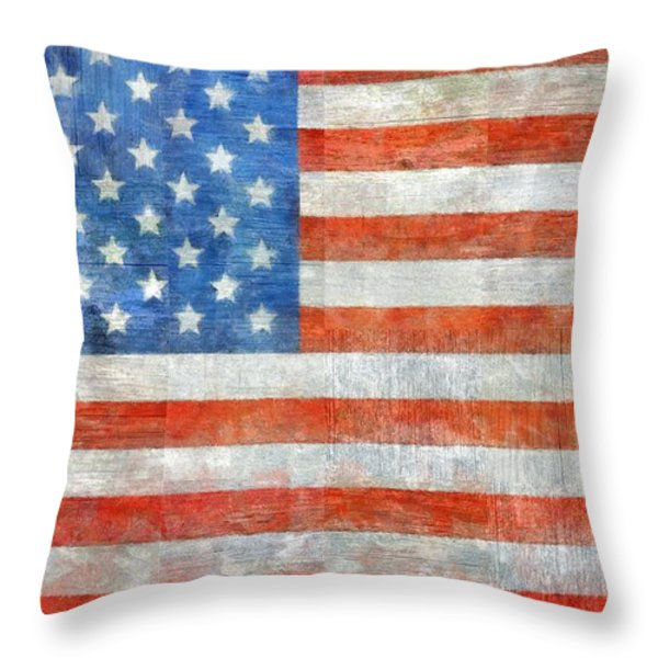 Homeland Throw Pillow by Michelle Calkins