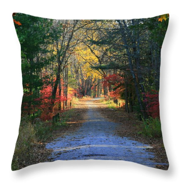 Homeward Bound Throw Pillow by Neal  Eslinger