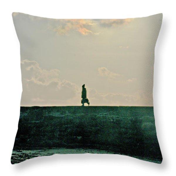 Homeward Bound Throw Pillow by Terri Waters