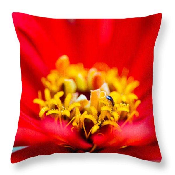 Honey Dew Breakfast Throw Pillow by Alexander Senin