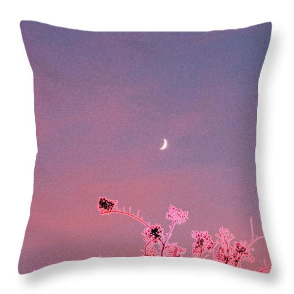 Honeymoon By Jrr Throw Pillow by First Star Art