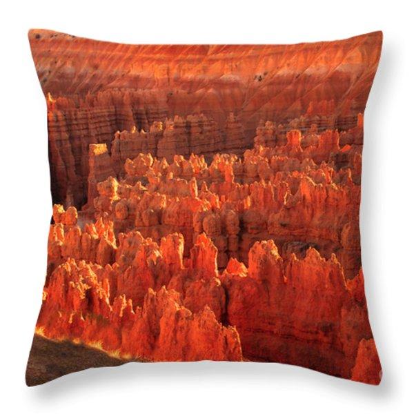 Hoodoos Basin Throw Pillow by Robert Bales